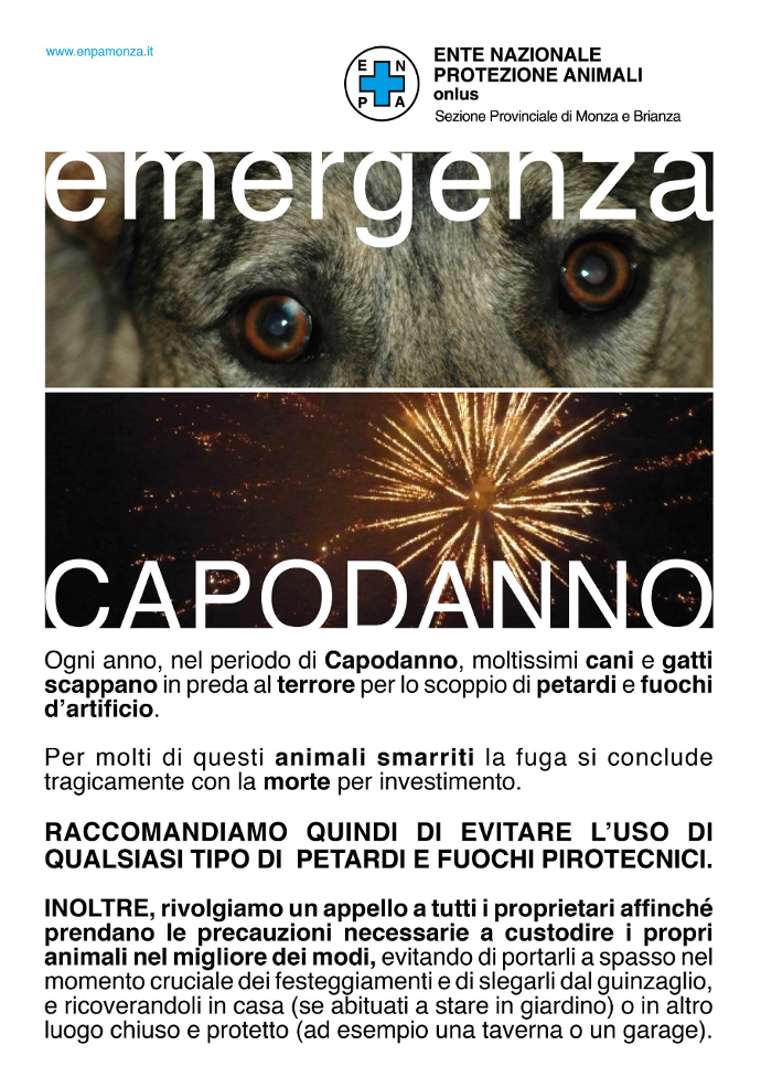 EMERG.CAPODANNO-2016-enpa-mb-home-2
