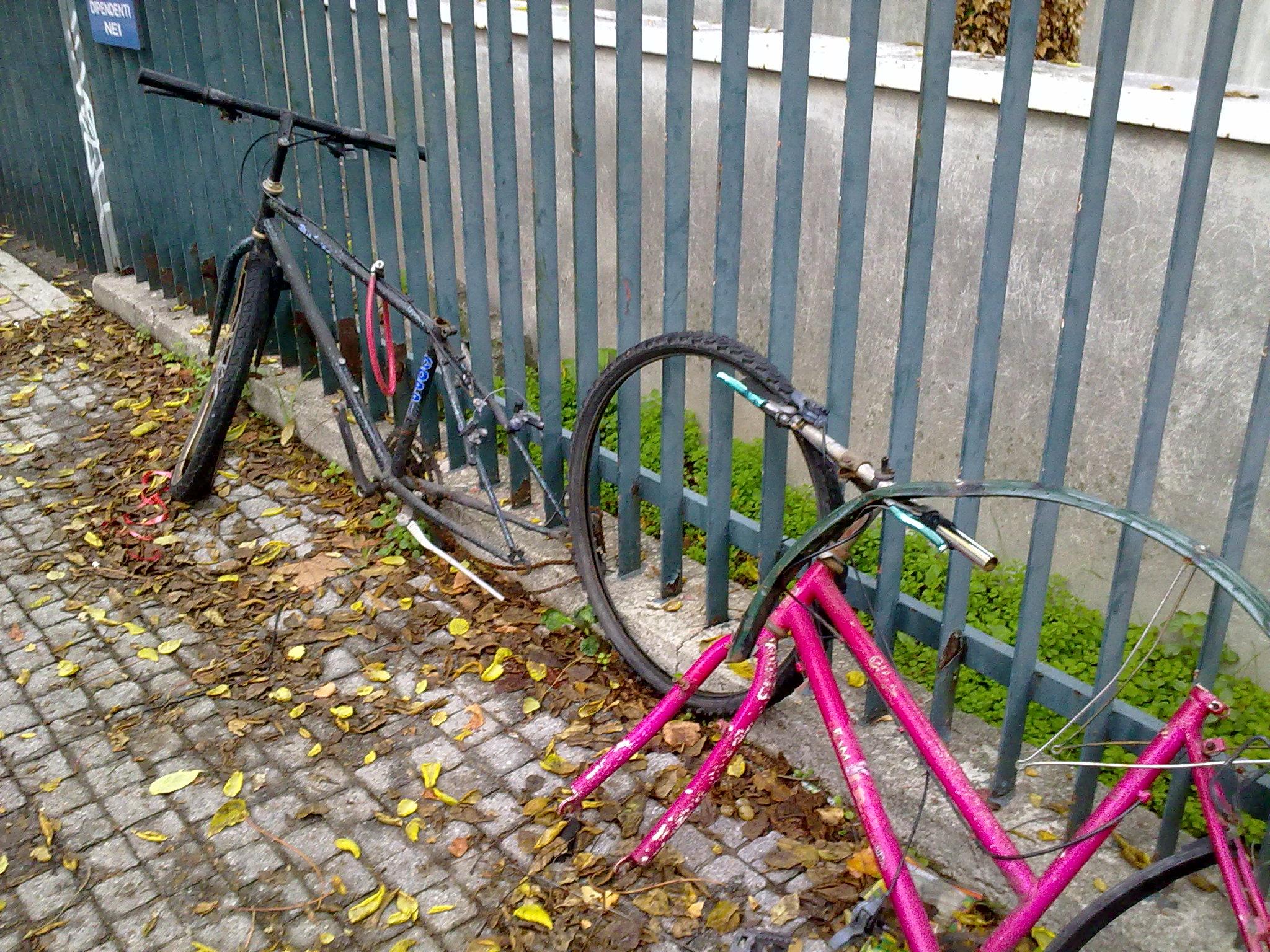 Bici rubate-2