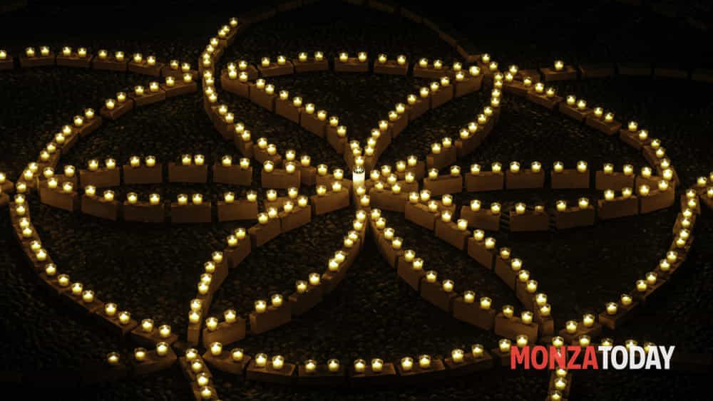 """""""seme di luce"""" dal seme al fiore della vita -omaggio a leonardo da vinci-5"""