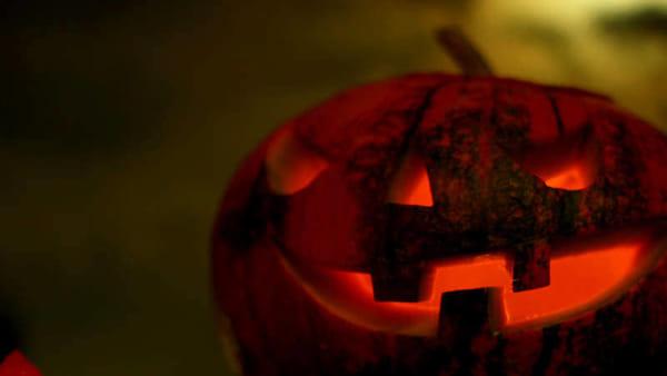 Halloween da brividi: il 31 ottobre notte al museo