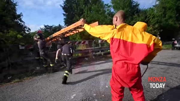 Cagnolina scappa per il temporale, salvata dopo 5 giorni nel Seveso:  il video del salvataggio