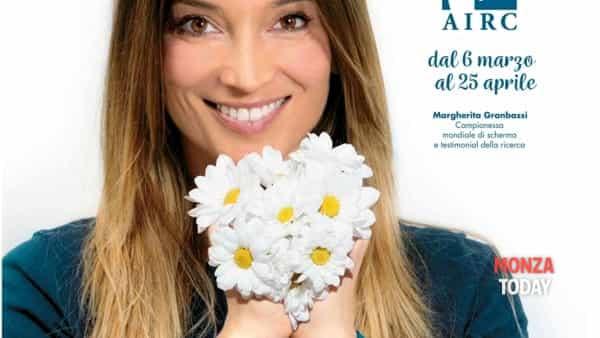 Anche a Monza Brianza margherita per Airc: un fiore per la ricerca