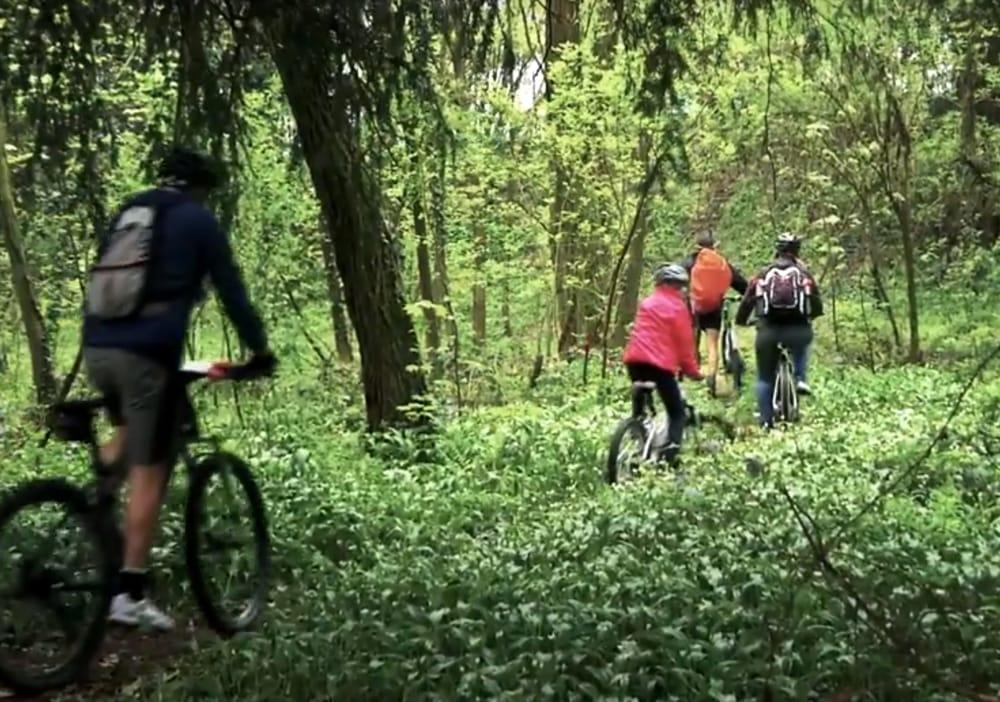 In bici al Parco di Monza (repertorio)
